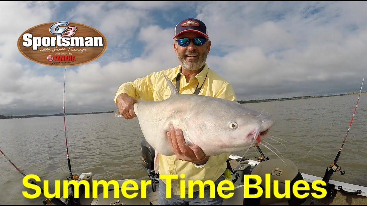 how to catch blue catfish in summer